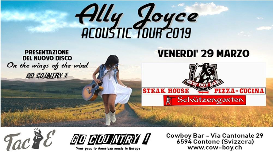 Ally Joyce Acoustic Tour 890 500